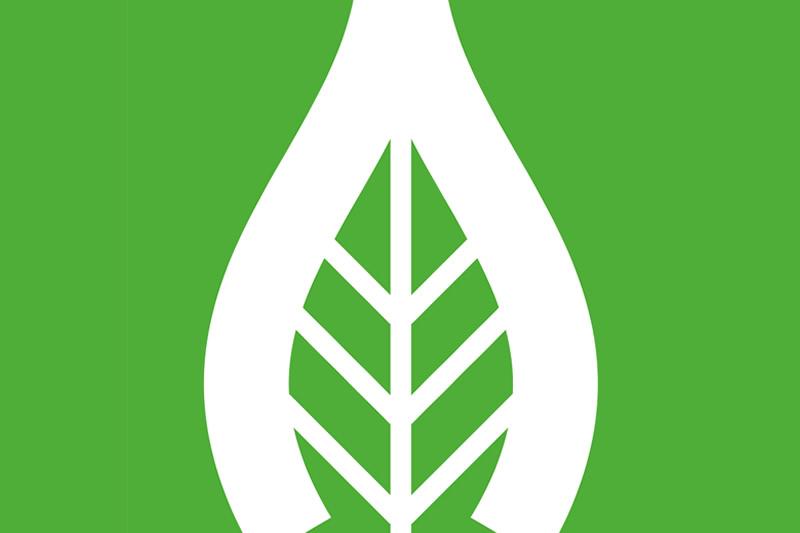 Caldaie a biomassaVichi Srl
